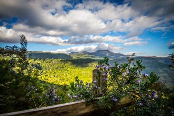 Hogsback accommodation requests