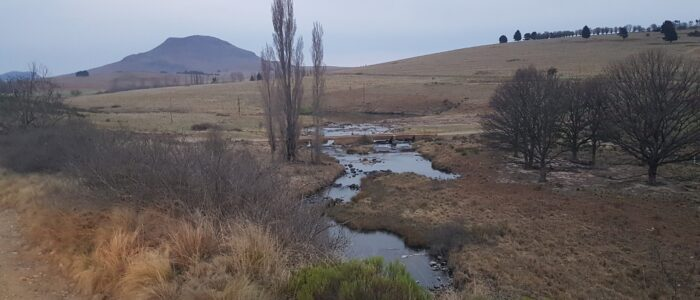 The prayer bridge on the way to Hogsback with Gaika's kop in the background