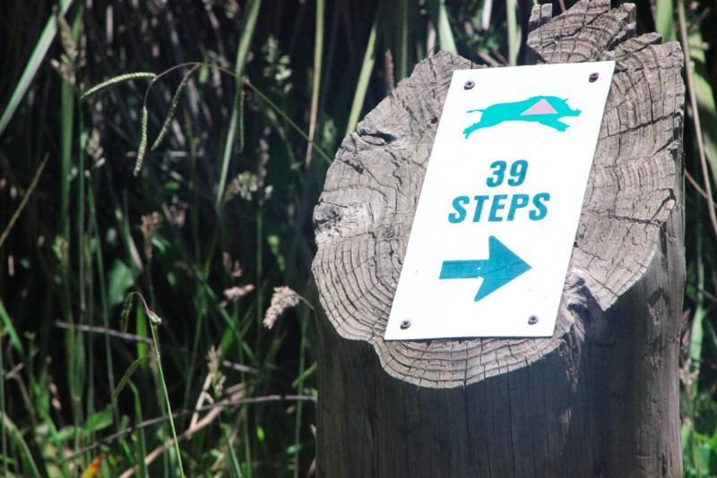 39-steps-hogsback3