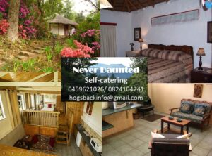 Never Daunted self Catering in Hogsback