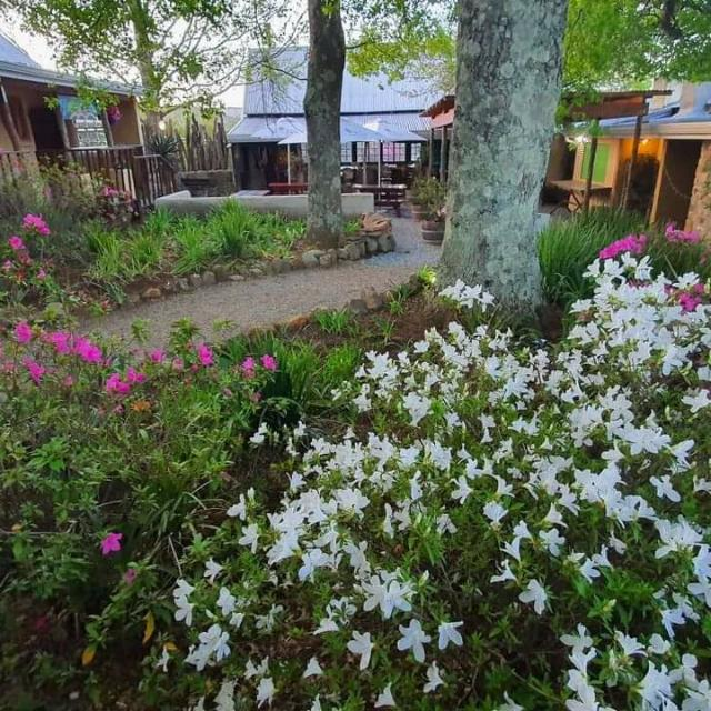 Morning market at the edge mountain retreat in Hogsback
