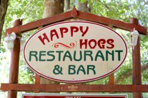 Happy Hogs Restaurant in Hogsback