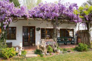 Rose Cottage in Hogsback
