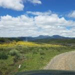 The road to Hogsback