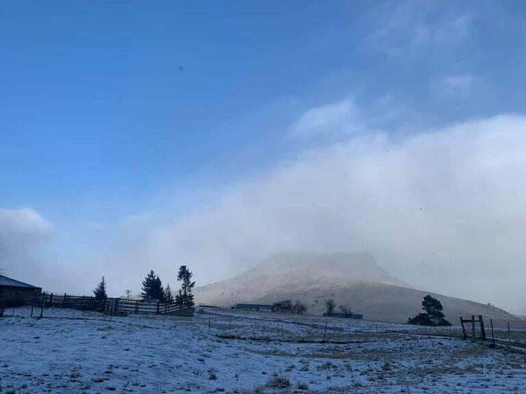 Misty oaks snow 1