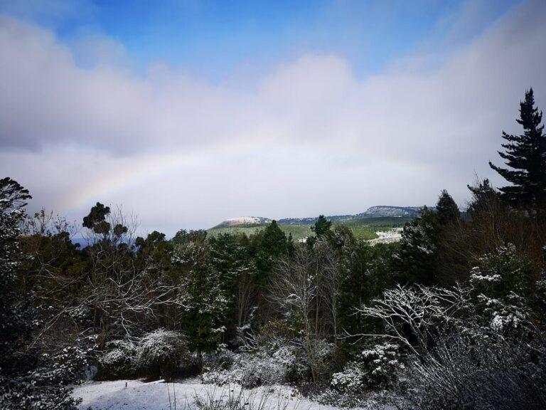 maggie -snow